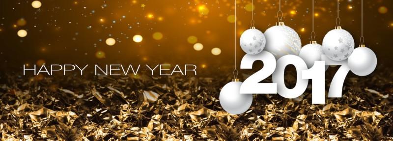 Frutti Mode souhaite une bonne année 2017 à Donges