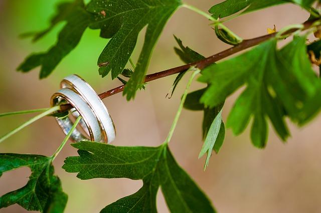faites de votre mariage un magnifique plaidoyer pour la planète